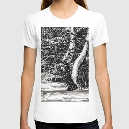 Winter Forest, Birch Trees, Snow in black and white T-shirt