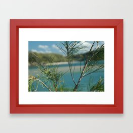 Dive right in Framed Art Print