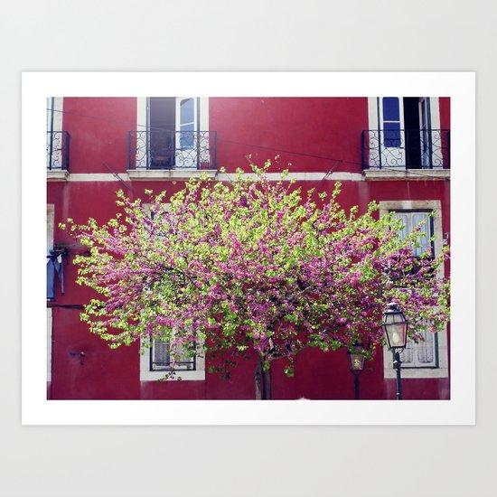 Lisbon Bloom Art Print