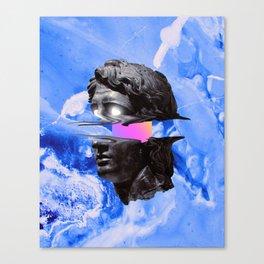 Wivi Canvas Print
