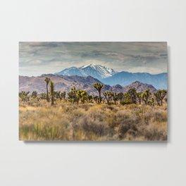 Layers of Joshua Tree Metal Print