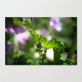 Ladybugs Earn Their Spots Canvas Print