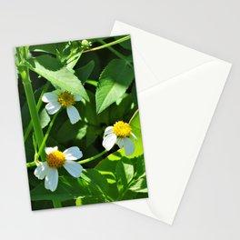 Nodding Beggar-Ticks Stationery Cards