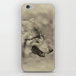 lonesome wolf iPhone Skin