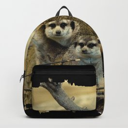 African Meerkat Trio Backpack