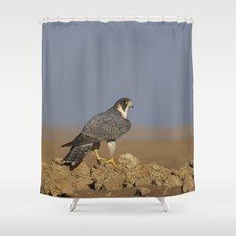 Falcon Scape Shower Curtain