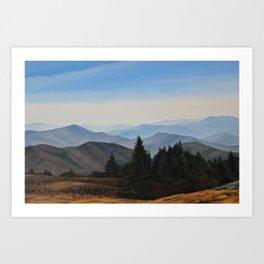 Grassy Ridge Bald, NC Art Print
