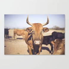 On the Farm  Canvas Print