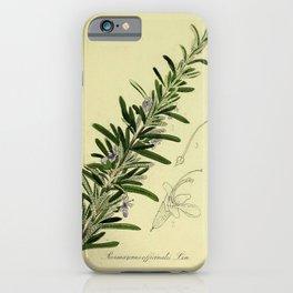 Botanical Rosemary iPhone Case
