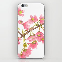 Watercolor Spring Tree Branche iPhone Skin