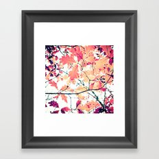 October Oak Framed Art Print