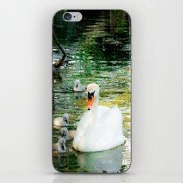 Swan Dreams iPhone Skin