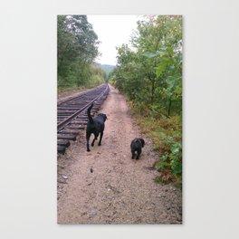 where the tracks lead Canvas Print