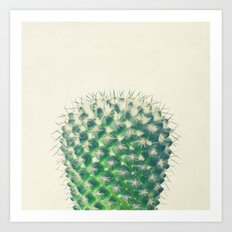 Cactus IV Art Print