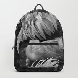 Ruffled Feathers Backpack