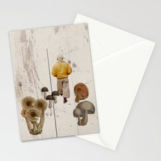 Promenade Stationery Cards
