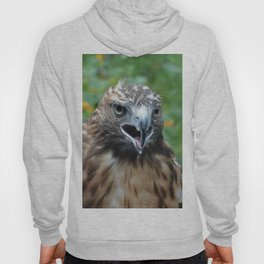 Red-Tailed Hawk Hoody
