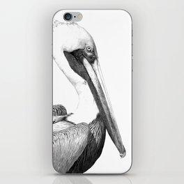 Black and White Pelican iPhone Skin