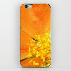 Orange Flower Photography iPhone & iPod Skin