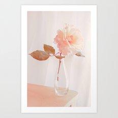 Diaphanous Rose Art Print