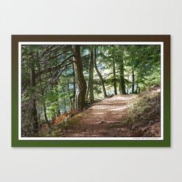 FOREST TRAIL WALKING INTO THE LIGHT Canvas Print