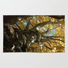 Golden Canopy Rug