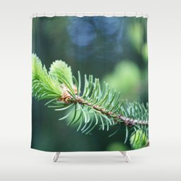 Spruce branch in spring. Shower Curtain