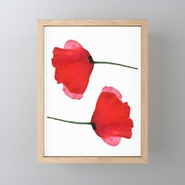 Two red poppies Framed Mini Art Print