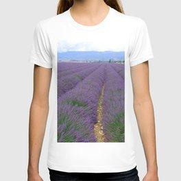 Lavander T-shirt