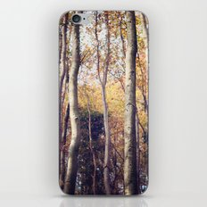 Forest of Silence iPhone & iPod Skin