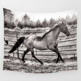 Miss Pepper the Rocky Mountain Horse  Wall Tapestry