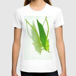 Kadydid T-shirt