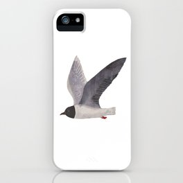 little gull iPhone Case