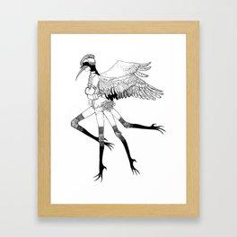 Graceful Daddy Long Legs Framed Art Print