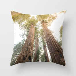 Redwood Forest Canopy Sunset Throw Pillow