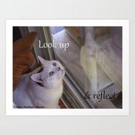 Cat Reflected: Look Up & Reflect Art Print