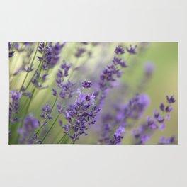 Dream Garden Lavender Rug