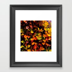 Red, Yellow, Green Framed Art Print