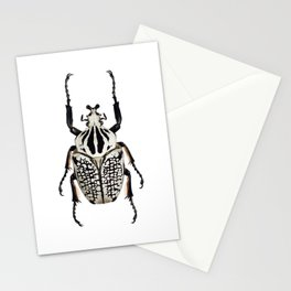 Goliathus Orientalis Stationery Cards