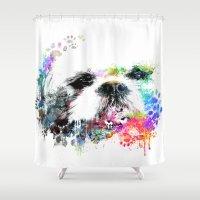 shih tzu Shower Curtains featuring Shih TZU  by PhotosbySN
