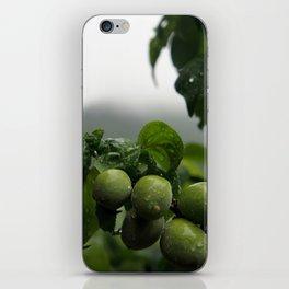 Plums iPhone Skin