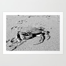 -crab- Art Print