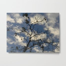 Clouds and Branches Metal Print