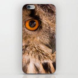 Eagle Owl Close Up iPhone Skin