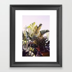 Paradise #1 Framed Art Print