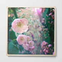 Bloom1 Metal Print
