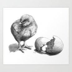 Chick sk132 Art Print