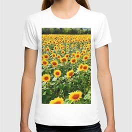 Field of Sunny Flowers T-shirt