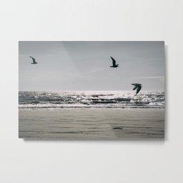 Flight of Seagulls Metal Print
