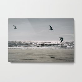 Flight of Seagulls Metal Print